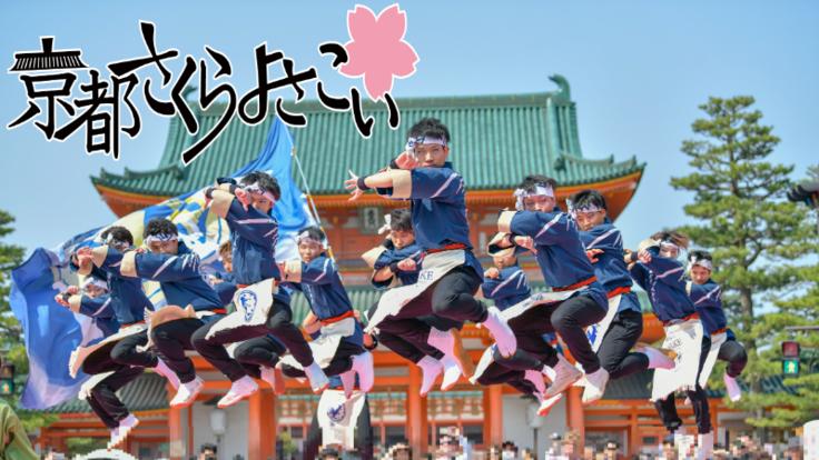 学生の力で第16回京都さくらよさこいを盛り上げたい!!