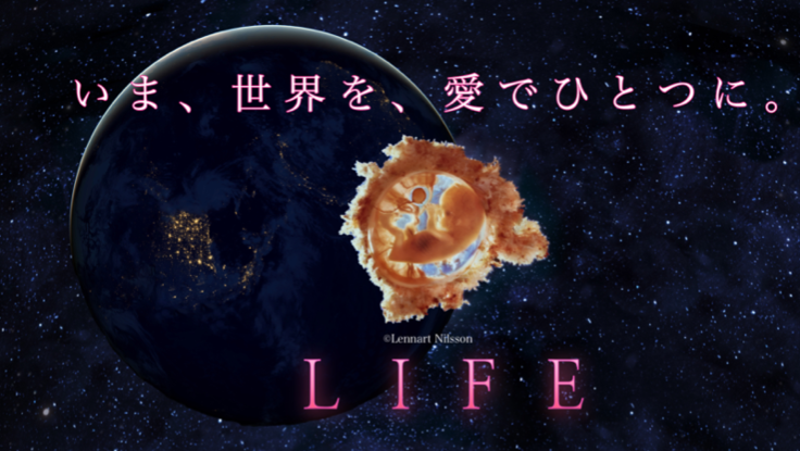 愛のメッセージを世界へ!『LIFEいのち』英語版を制作!