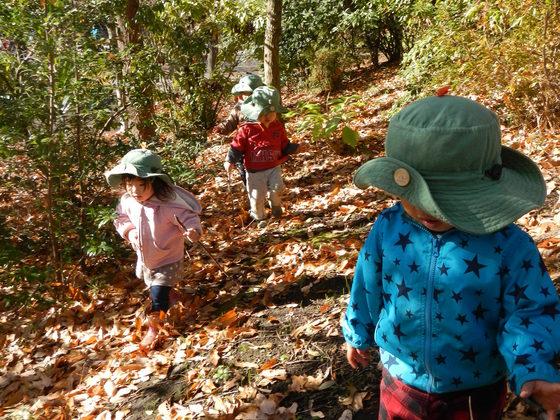 森と心が育つ循環型社会を保育園から!