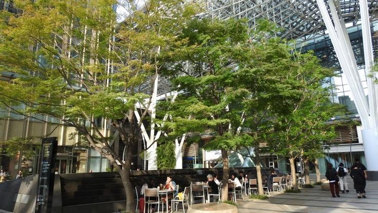 意外と知られていない東京の「緑」の楽しみ方、お伝えします