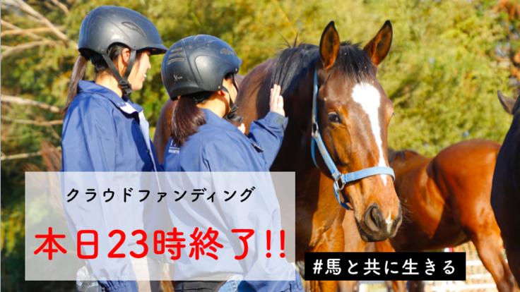 セリで買い手がいない馬を1頭でも多く救い、競走馬デビューへ!