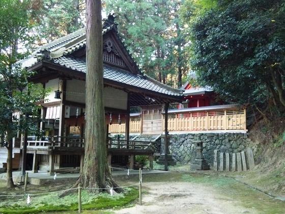 神社の宮司が神社横で人々の集えるサロン&カフェを始めたい!