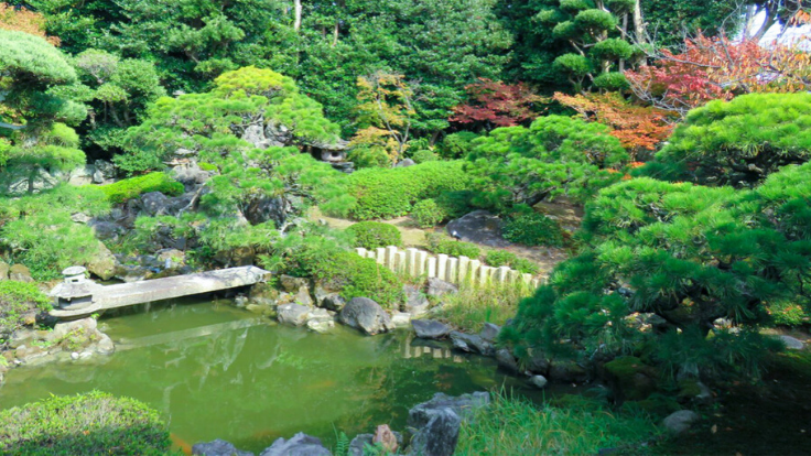 四百年の古美術・百年の庭と茶室。萩の歴史と自然に浸る宿実現へ