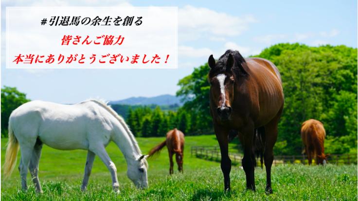#引退馬の余生を創る:馬と人とが共存共栄できる牧場が描く未来