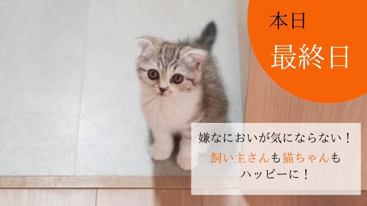 もっと猫を飼いやすい環境へ。ねこ用換気扇内蔵型トイレを開発!