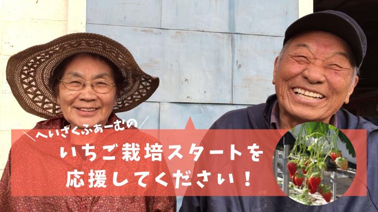 北海道厚真町・復興のシンボルとして、いちご栽培を開始したい!