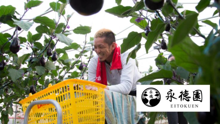 大阪の水なす農家の挑戦。生産者から消費者へ美味しさを届けたい