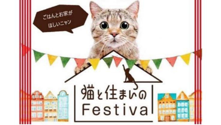 猫と住まいのフェスティバル~ボサノバコンサート付