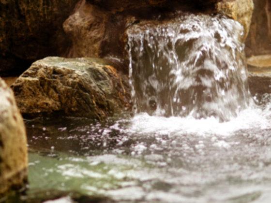 森のなかに、薪で沸かし心身を癒すヒノキの露天風呂を作りたい!
