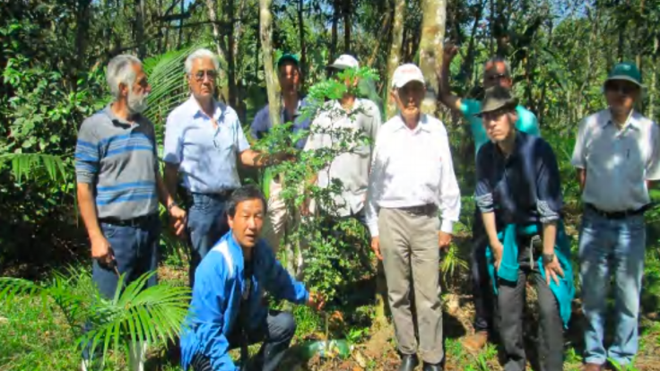 森林違法伐採防止と森林再生事業を継続へ!