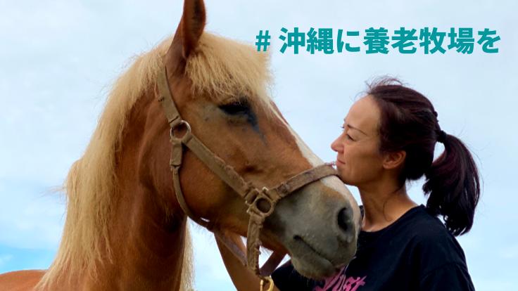見放された馬に再チャンスを!沖縄に引退馬のふれあい牧場を