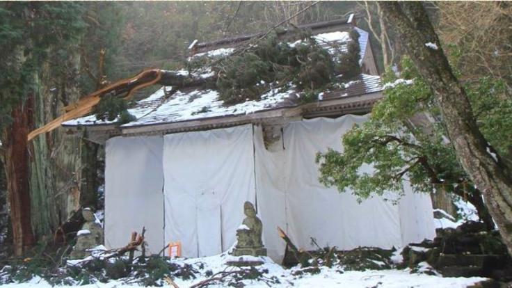 樹齢800年の大枝が直撃!登録文化財熊野神社を修繕し、後世へ!