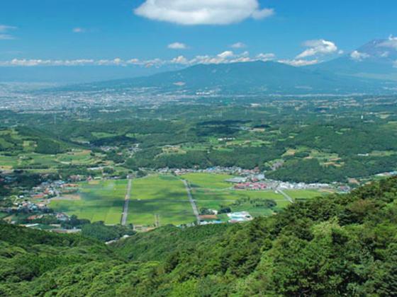 北伊豆地震から85年。伊豆半島に巨大なアート作品を作ります!