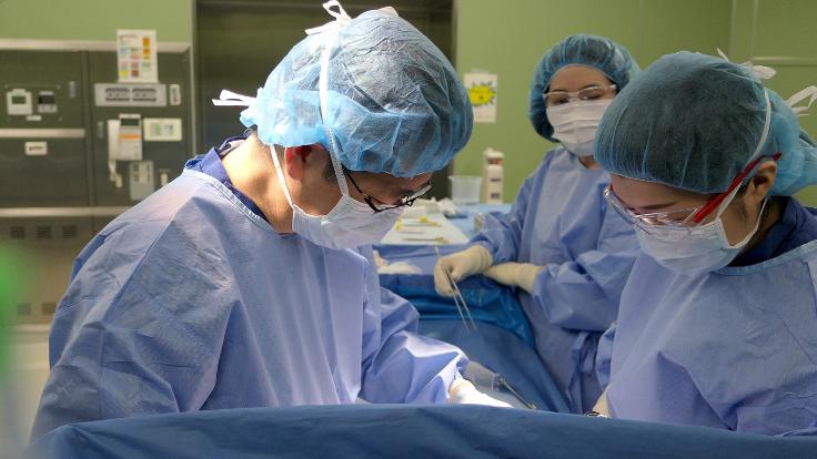 トリプルネガティブ乳がん:再発を防ぐ治療薬、確立のための臨床試験を