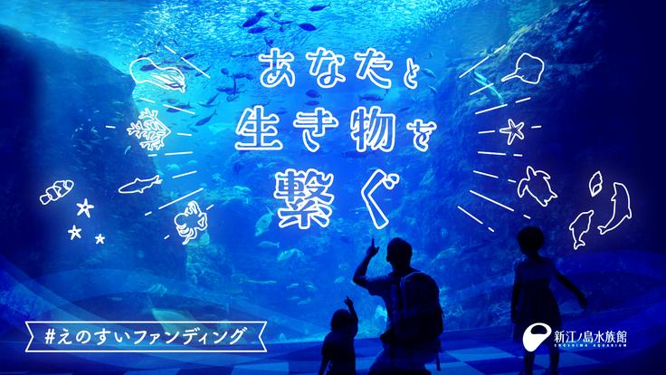 新江ノ島水族館|あなたと生き物を繋ぐ #えのすいファンディング