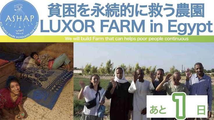 【コロナで深刻化】貧困を永続的に救う農園 in EGYPT