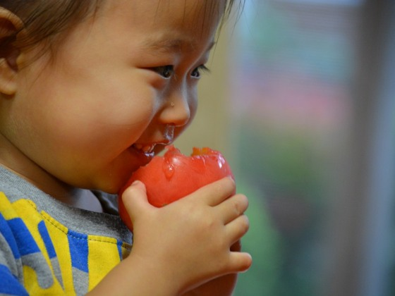 栄養不足の子ども達に新鮮な野菜を届け、健やかに育ってほしい!