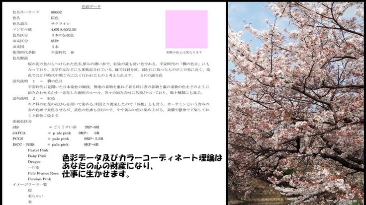 日本の色彩文化を色彩データで、色彩調和理論として世界に発信したい。