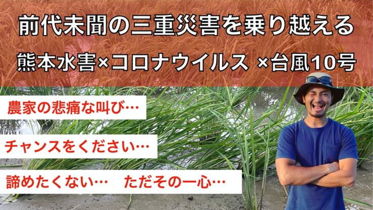 【台風10号:熊本】お米農家の悲痛な叫び…「助けてください」