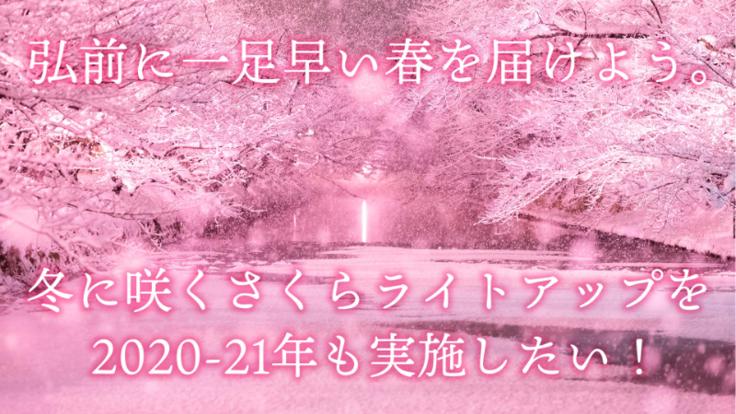 「冬に咲くさくらライトアップ」は弘前を応援!一足早く春を届けたい!