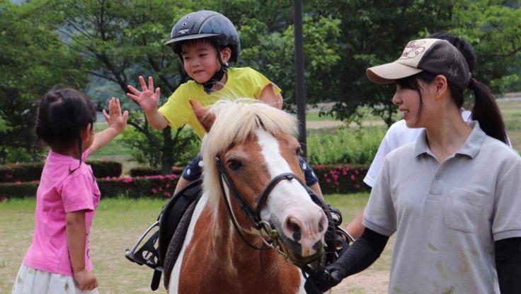 馬が引き出す子どもの可能性|新たなセラピーホース購入プロジェクト