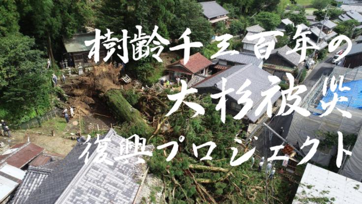 【令和2年7月豪雨】樹齢1300年の大杉被災復興プロジェクト