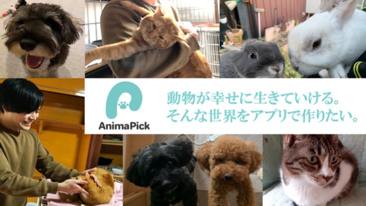 どんな人でも動物保護活動へ参加できる世界を、アプリで作りたい。