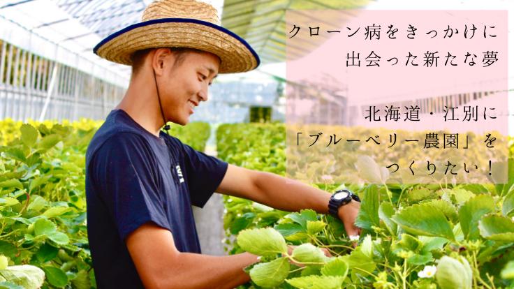 クローン病に負けない│公務員から北海道のブルーベリー農家へ転身