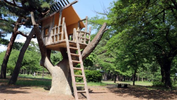 無料の公園を作り子供たちにアジアと自然を感じてほしい!(福岡県)