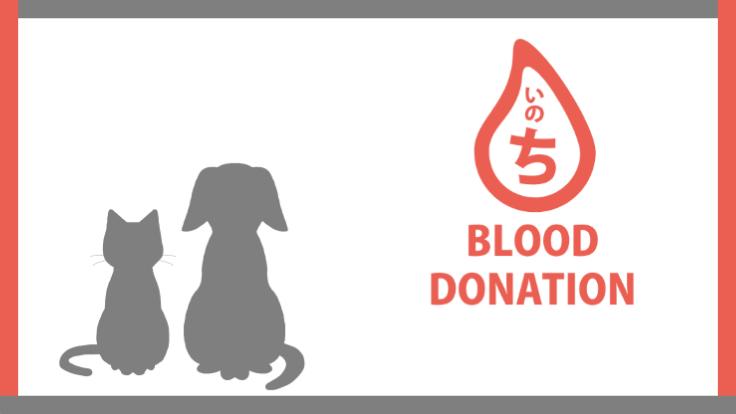 【血液で救う犬猫の命】助け合いで広げる輸血ドナープログラム構築へ