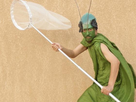 「むしむし生放送〜昆虫大学サテライト」登壇博士たちの旅費とかを集めます!
