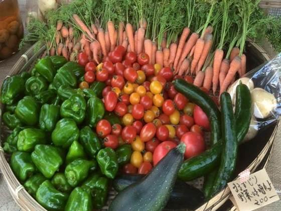 生命力溢れたお野菜を届け!オーガニックな暮らしを提案したい!