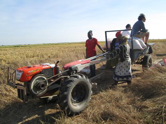 農業機械レンタルによるアフリカ貧困農家の所得向上プロジェクト!