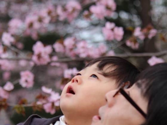 パパとママ、子どもたちからのSOSをサポートする施設を札幌に