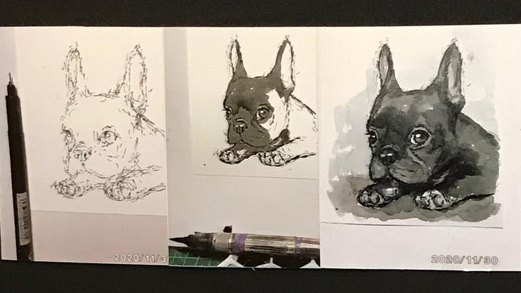 マーカーペンと筆ペンだけで描く動物イラスト教室を開きたい