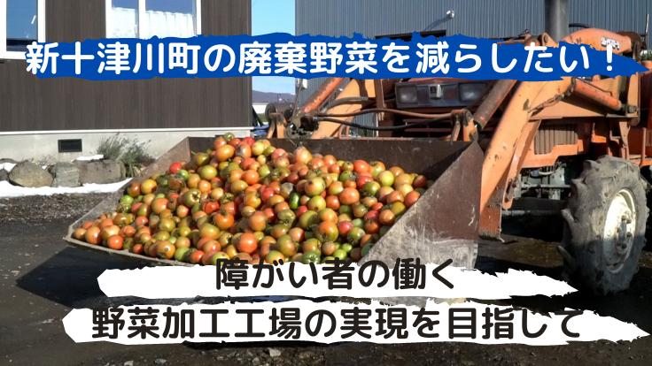 廃棄野菜を減らしたい!障がい者の働く野菜加工工場の実現を目指して。