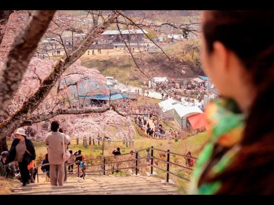 1/10Fukushimaをきいてみる庄内上映会に古波津陽監督を呼びたい