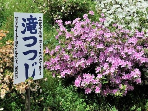 相模原市の隠れスポット!風情ある旧津久井郡で街歩き撮影会を!
