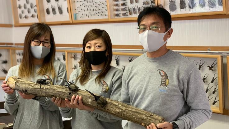 兵庫「たつの昆虫館 」の心でつなぐ昆虫館応援プロジェクト