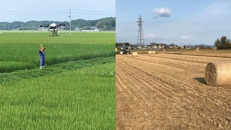 よりよいお米を皆様に届けたい!~低温保存倉庫導入をめざします~