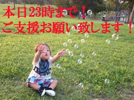 仙台で一人ひとりの子ども達と、じっくり関る保育を始めます!