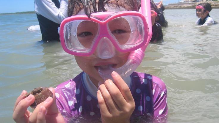 もう一度サンゴが生育できるきれいな海を取り戻して子ども達へ残したい