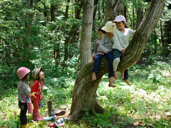 森のようちえんの森の木を使った園児と保護者による家具づくり