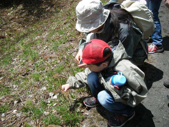 福島の子どもたちの笑顔のために~保養「ぽかぽかプロジェクト」