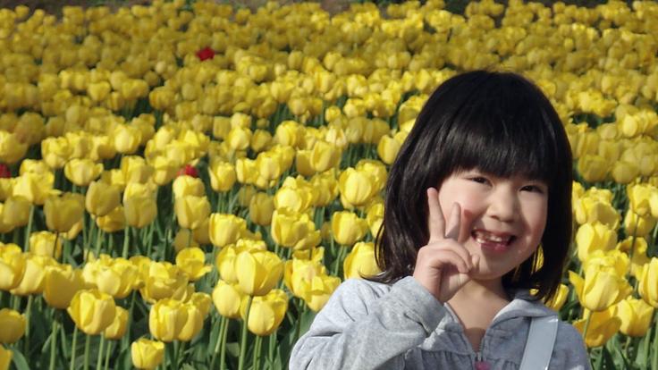 鶴岡オランダ友好花壇にユニバーサル・マットを整備したい