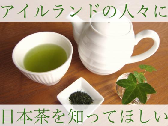 日本茶を通してアイルランドの人々に日本の魅力を伝えたい!