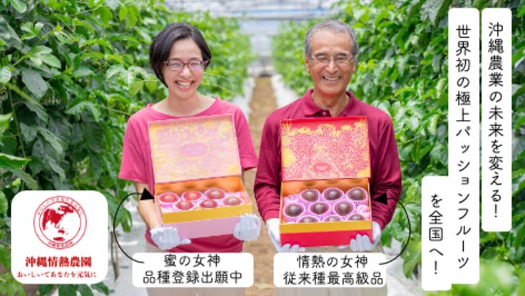 沖縄農業の未来を変える!世界初の極上パッションフルーツを全国へ!