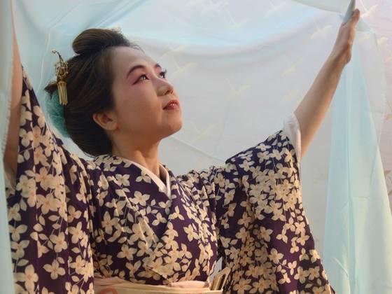 新たな伝統への挑戦!実験的日本舞踊「猫と風」公演プロジェクト