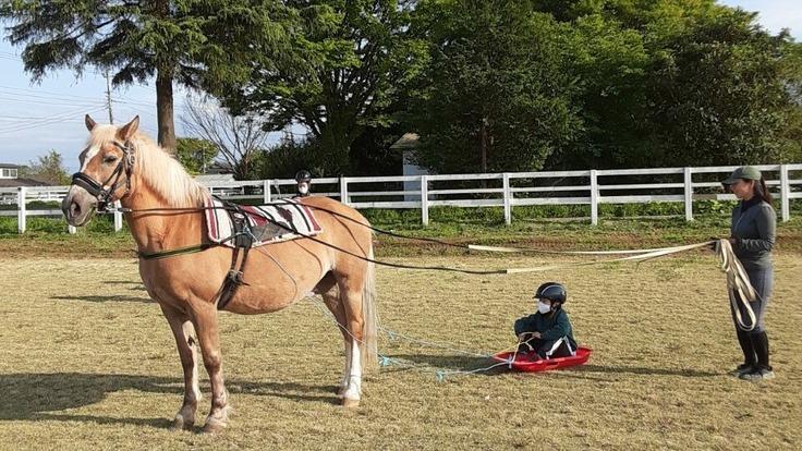 馬車を購入し、障がいの有無や年齢を問わず馬と関わる機会に繋げたい!