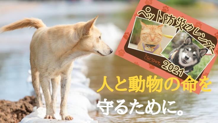 災害時、ペットとあなたの命を守る「ペット防災カレンダー」を全国へ!